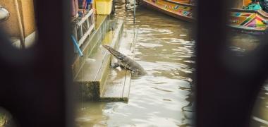 Amphawa Floating Market, Pływający Targ (8)