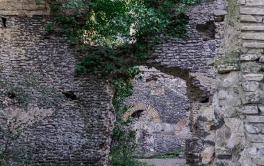Galeria-Antica-Careia-11