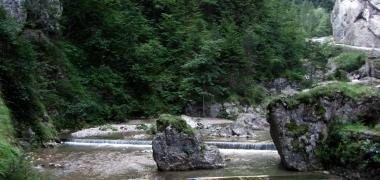 Bicas, Wąwóz (11)