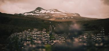 Wodospad Glymur Islandia (11)