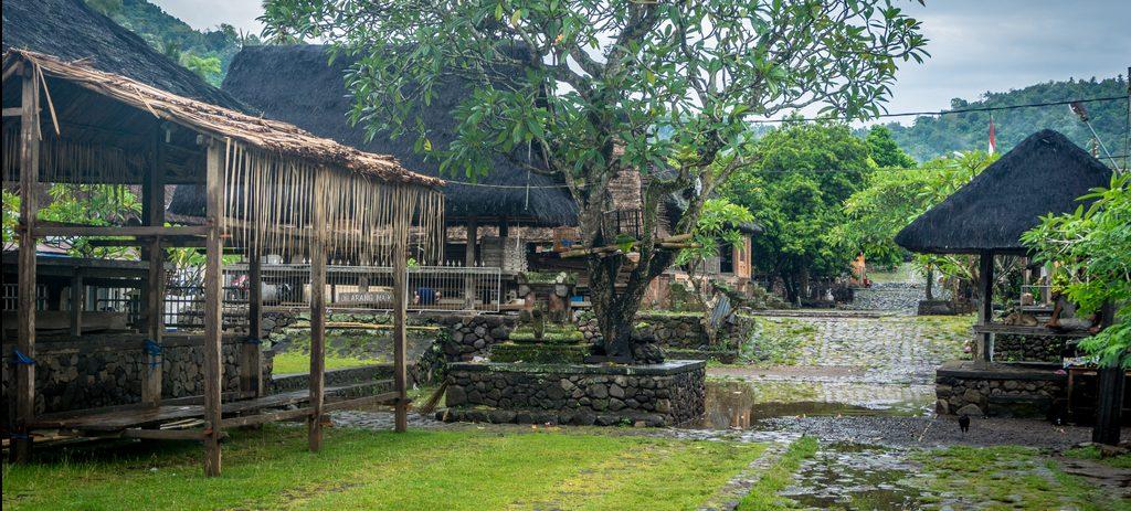Tenganan Pegringsingan, Czyli Tradycyjna Balijska Wioska i Plemię Bali Aga.