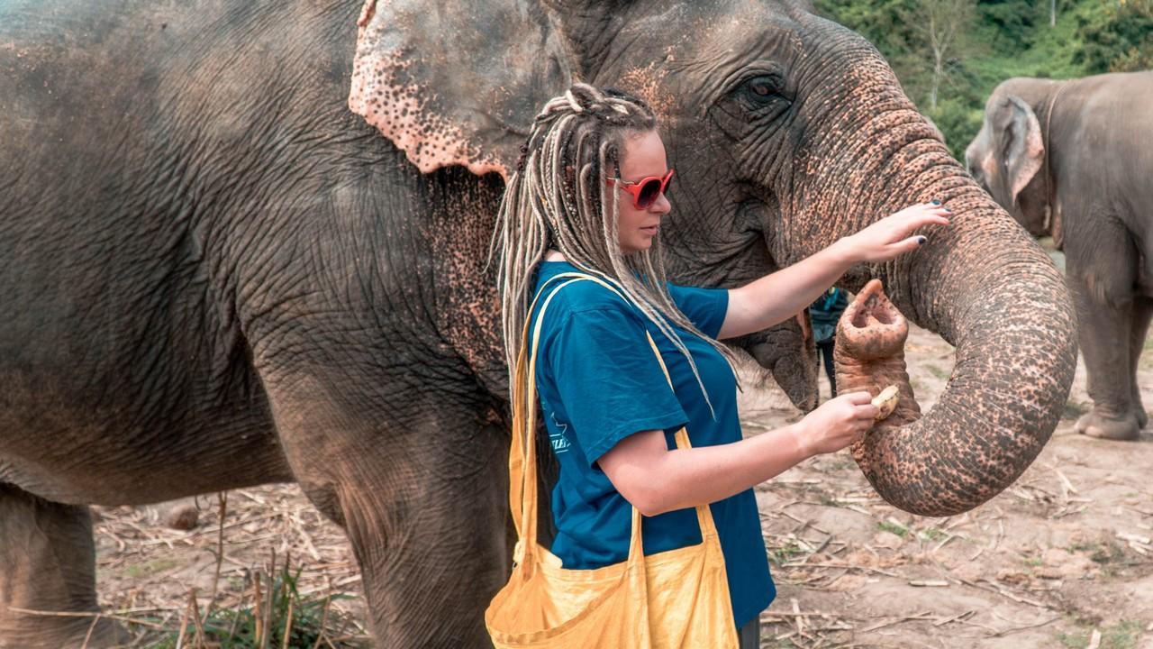 Etyczne Wakacje w Tajlandii: Sanktuarium Słoni
